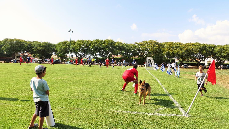 """KADUREGEL SHEFEL: THE ISRAELIAN """"LOWER LEAGUE FOOTBALL"""" PROJECT"""